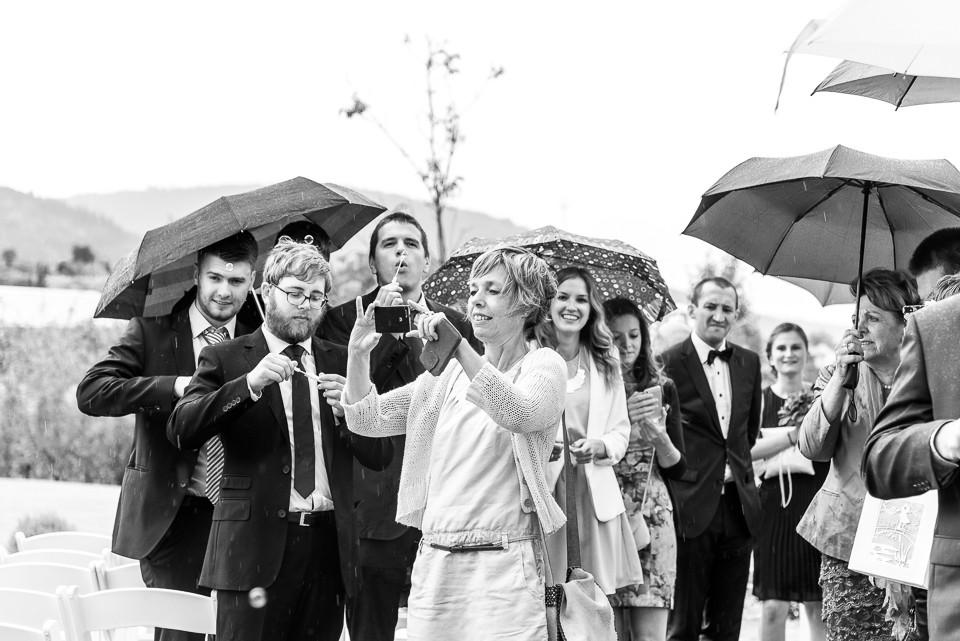 Hochzeitsfotograf Roger Rachel 2015 Pfalz-Neustadt-Gimmeldingen-Netts Restaurant und Landhaus-freie Trauung-romantisch Hochzeitsfotos natuerlich froehlich ungestellt 50.jpg