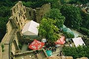Rhein-Neckar_Heidelberg_Burg-Windeck.jpg