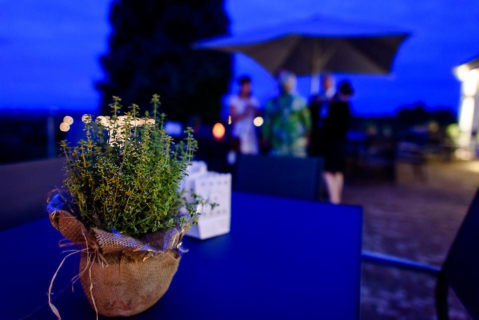 Hochzeitsfotograf Roger Rachel 2015 Pfalz-Neustadt-Gimmeldingen-Netts Restaurant und Landhaus-freie Trauung-romantisch Hochzeitsfotos natuerlich froehlich ungestellt 62.jpg