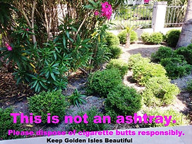 WEB_SM_THIS-IS-NOT-KGIB-flowerbed.jpg