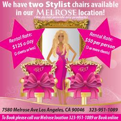 PW 2 Stylist chairs