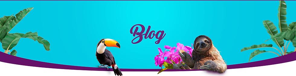 Hero Blog.png