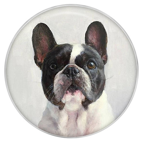 Bouton pression (snap) Nomaad Interchangeable, Chien Boston terrier