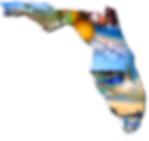 florida_icon.png