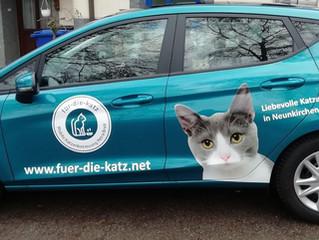 Mein Katzenmobil
