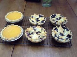 Small Sweet Potato & Blueberry Pies