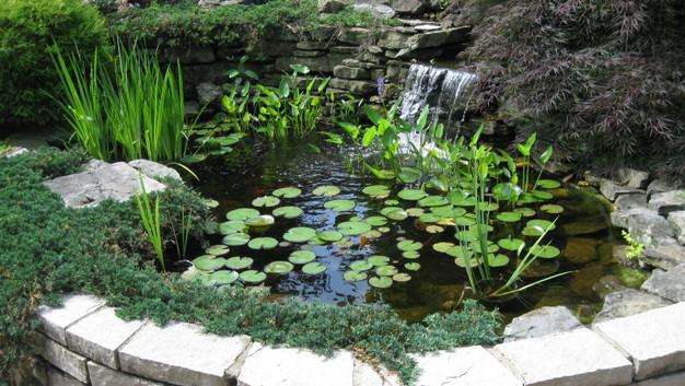 Fond du lac Stone Wall & Water Garden