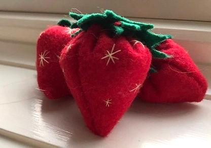 Hannah Adler Strawberries-2.JPG