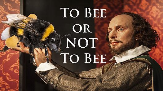 TO BEE.jpg