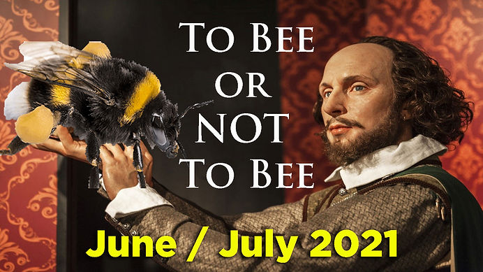 TO-BEE-2021.jpg