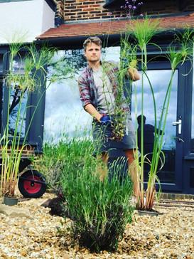 Garden Designer Ben Hillman