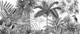 jarawa-noir-blanc.jpg