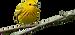 353-3532894_detroit-audubons-seasonal-ne