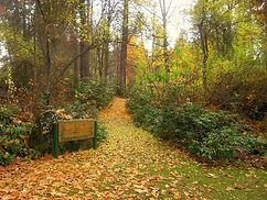 1280px-John_A._Finch_Arboretum_-_IMG_6911.JPG
