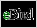 eBird-480x360.png