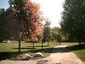 ArboretumPlaza1.JPG