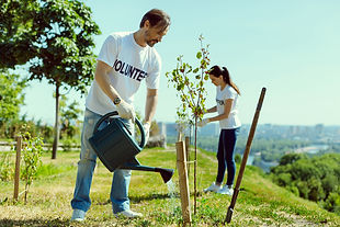 need-to-know-watering-trees1.jpg