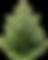 fir_tree_PNG2473.png