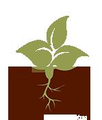 logo_mnla.png