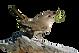 wren-png-transparent-wrenpng-images-plus