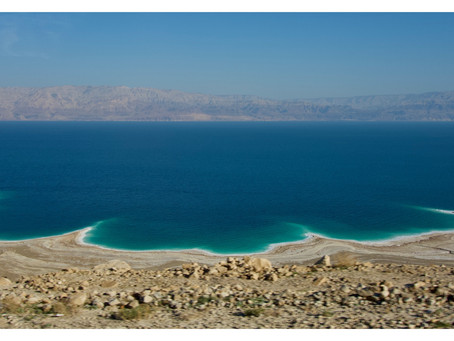 How dead is the Dead Sea?