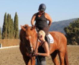hevosen tervehtiminen