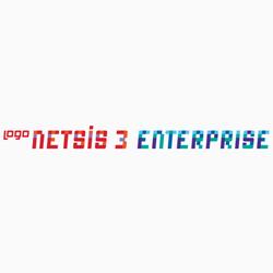 Logo Netsis 3 Enterprise