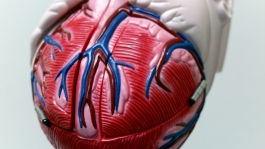 1-angina-intro.jpg