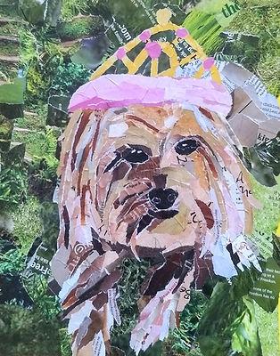 diva daisy collage.jpg