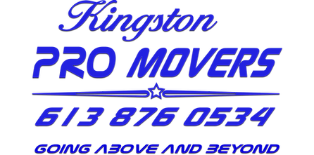 Kingston PRO MOVERS text logo  BLUE w shadow.png