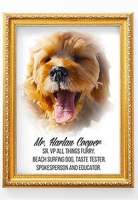 Mr. Harlan Cooper Portrait.jpg