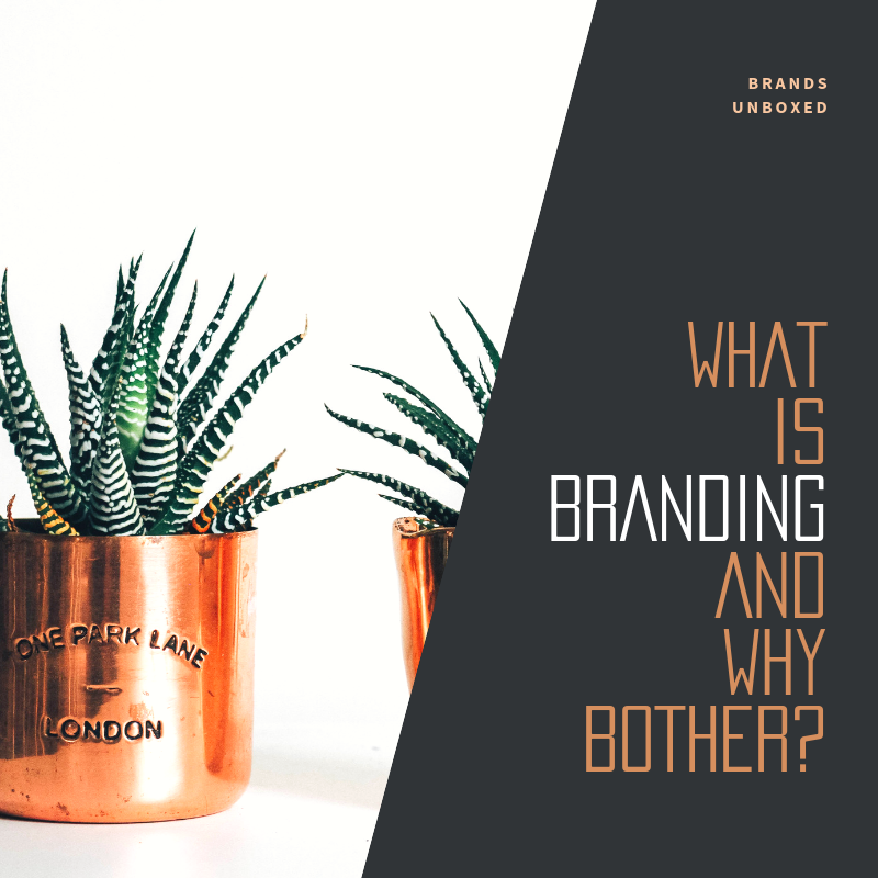 What is Branding and Why bother with it blog cover.