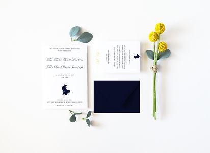 malia_derek_wedding.jpg