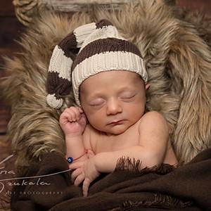 Baby Sebastian
