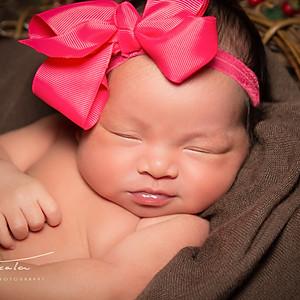 Baby Livia Rose