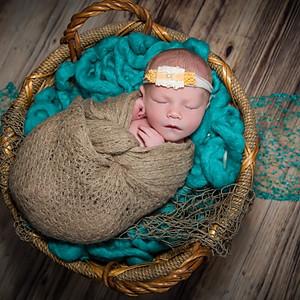 Baby Quinn