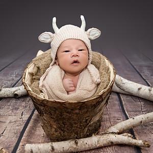 Baby Haruto