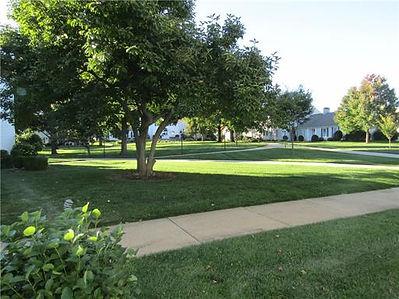 5-D Front yard.jpg