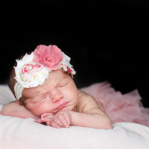 newborn studio portraits