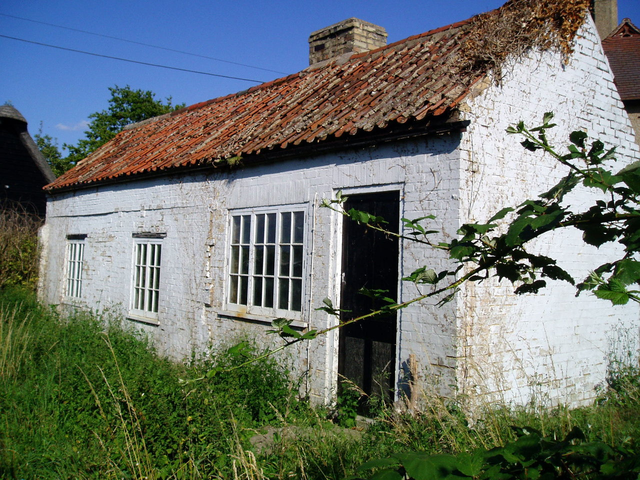 21 WICKEN DISREPAIR 2008