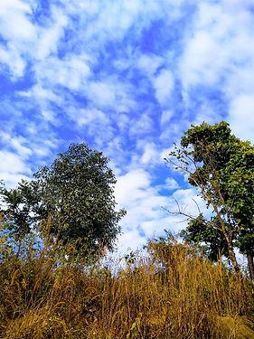 Araku valley, Skies in the afternoon