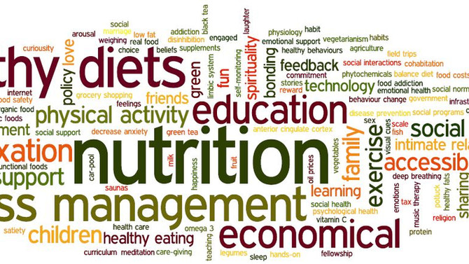 Why Work With A Nutritionist?