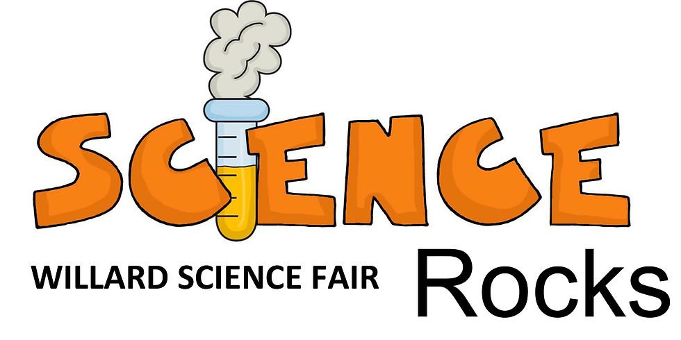 Science Fair Rocks!