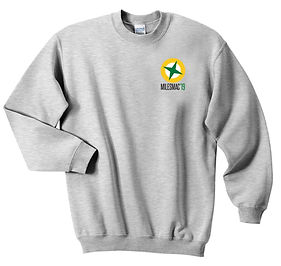 Embroidered and printed sweatshirts