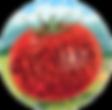 MIFM Logo.png