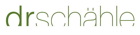 SCH_logo_Pantone.jpeg