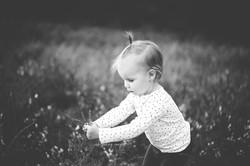 shoalhaven family photographer