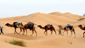 Places You Must See In Tunisia