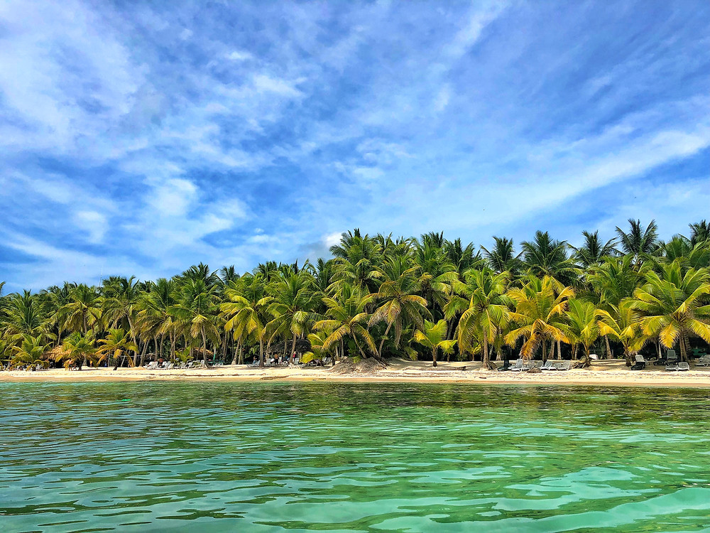 [Image description:] A forest of palm trees with vibrant green leaves stretch across the width of the image. They are on a sandy beach of what appears to be an island. Tourists dot the shoreline. In the foreground, bright green waters stretch from the point in which the photo was taken (presumably while in the water) and the beach beyond. White clouds stretch across the sky like smoke.