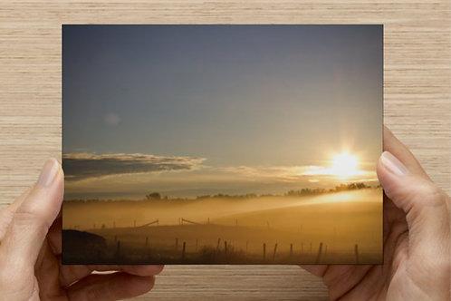 Prairies of Alberta (Canada) Postcard